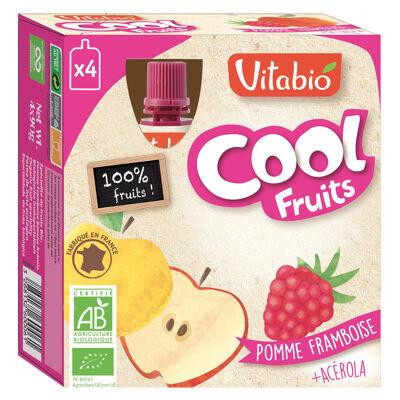 Cool fruits pomme framboise de corrèze (Vitabio)