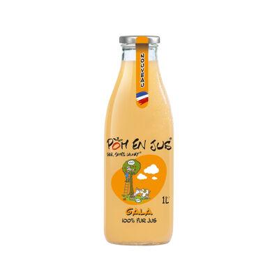 Pom'en jus® par james launay® variété gala 100% pur jus 1l (Pom' en jus)