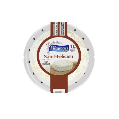 Saint-félicien (Paturages)
