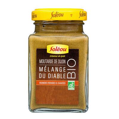 Moutarde de dijon biologique aux epices 300g (Soleou)