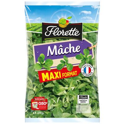 Mâche maxi format 270g (Florette)