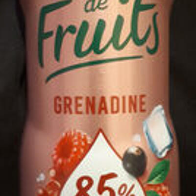 Fraîcheur de fruits - sirop de grenadine (Teisseire)
