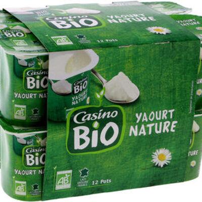 Yaourt nature issu de l'agriculture biologique (Casino bio)