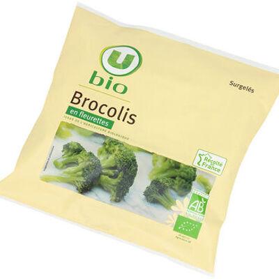 Brocolis (U bio)