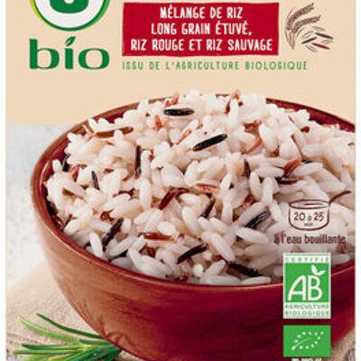 Trio de riz (U bio)