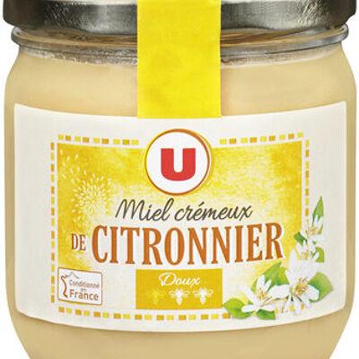 Miel crémeux de citronnier (U)