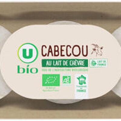 Fromage de chèvre lait pasteurisé 21% de mg (U bio)