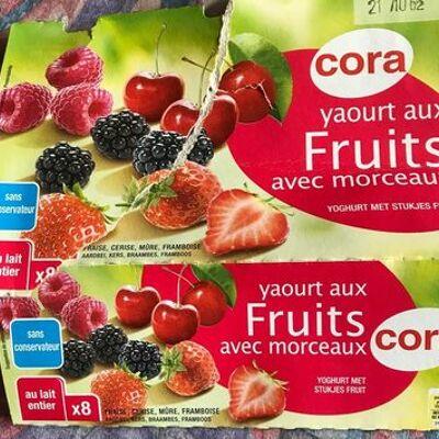 Yaourt fruits rouge, 8x125g (Cora)