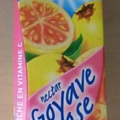 Nectar de goyave rose (Royal)