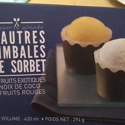6 timbales de sorbet, fruits rouges, coco, exotique. boîte de 420 millilitres (Picard)