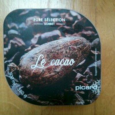 Sorbet le cacao (Picard)