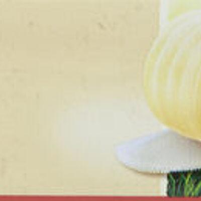 Beurre doux bio (Carrefour)