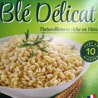Grains de blé précuits (Carrefour)