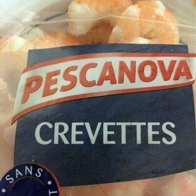 Crevettes entieres cuites réfrigérées (Pescanova)