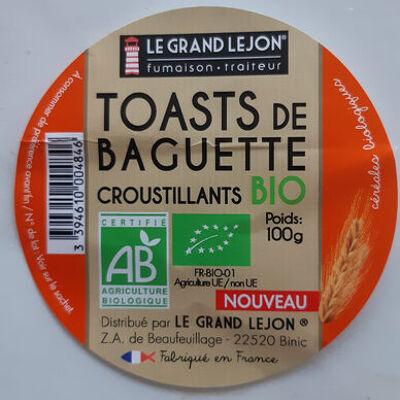 Toasts de baguette croustillants bio (Le grand lejon)