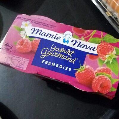 Yaourt gourmand framboise (Mamie nova)