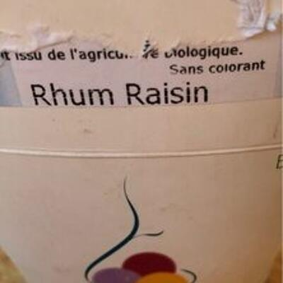 Glace bio rhum raisin (Terre adélice)