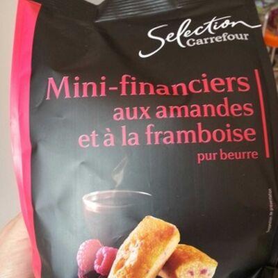 Mini-financiers aux amandes et à la framboise (Carrefour sélection)