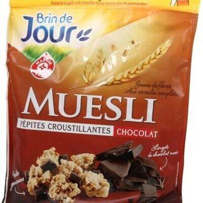 Muesli croustillant chocolat (Brin de jour)