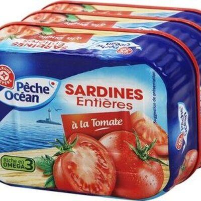 Sardines à la tomates x 3 (Pêche océan)