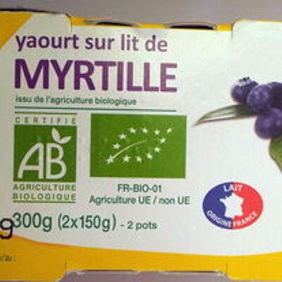 Yaourt sur lit de myrtille (Auchan bio)