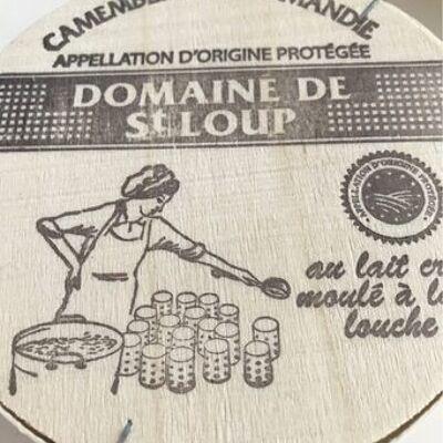 Camembert de normandie aop (Domaine de st loup)