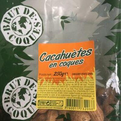 Cacahuètes en coques (Brut de coques)