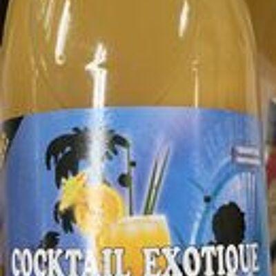 Cocktail exotique multifruits premium (Palmyra)