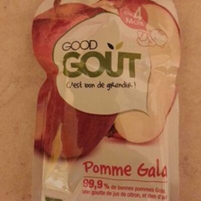 Gourde pomme gala - good gout (Good goût)