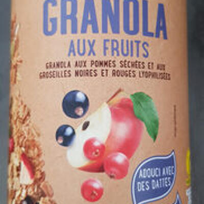 Granola aux fruits (One day more)