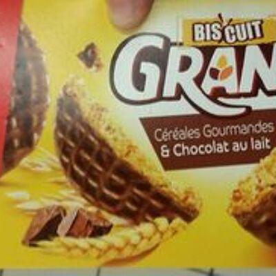 Biscuits au chocolat (Lu)