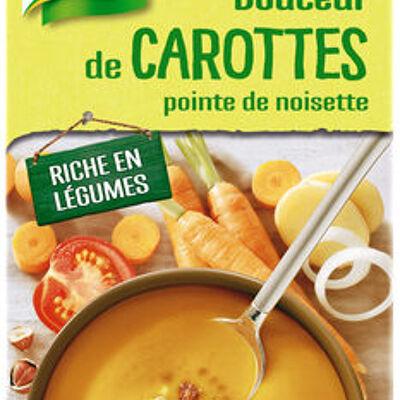 Knorr soupe liquide douceur de carottes pointe de noisette brique 4 portions 1l (Knorr)