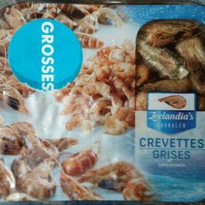 Crevettes grises (Zeelandia's garnalen)