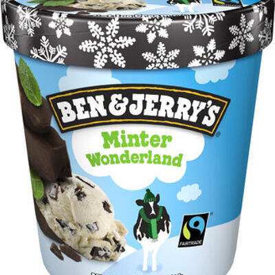 Ben & jerry's glace pot minter wonderland 500 ml (Ben & jerry's)
