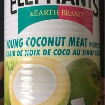 Chair de noix de coco au sirop léger (Twin elephants and earth brand)